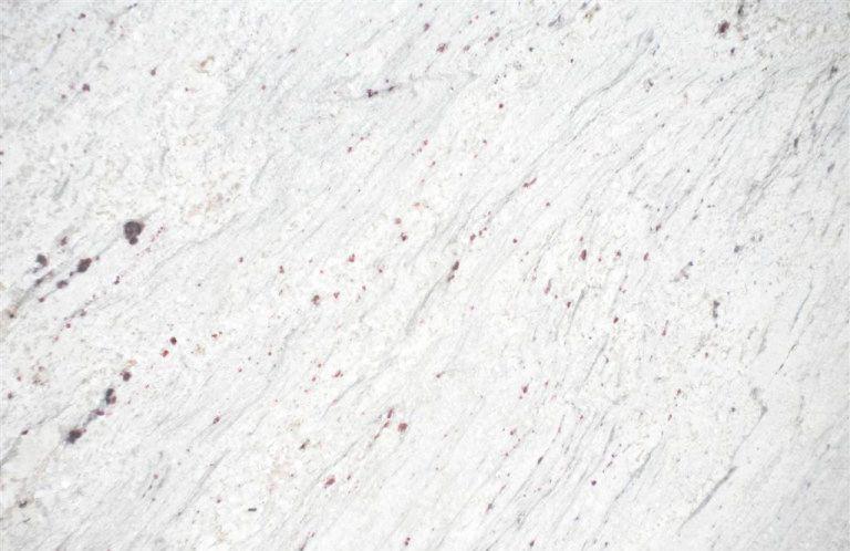 moon_white
